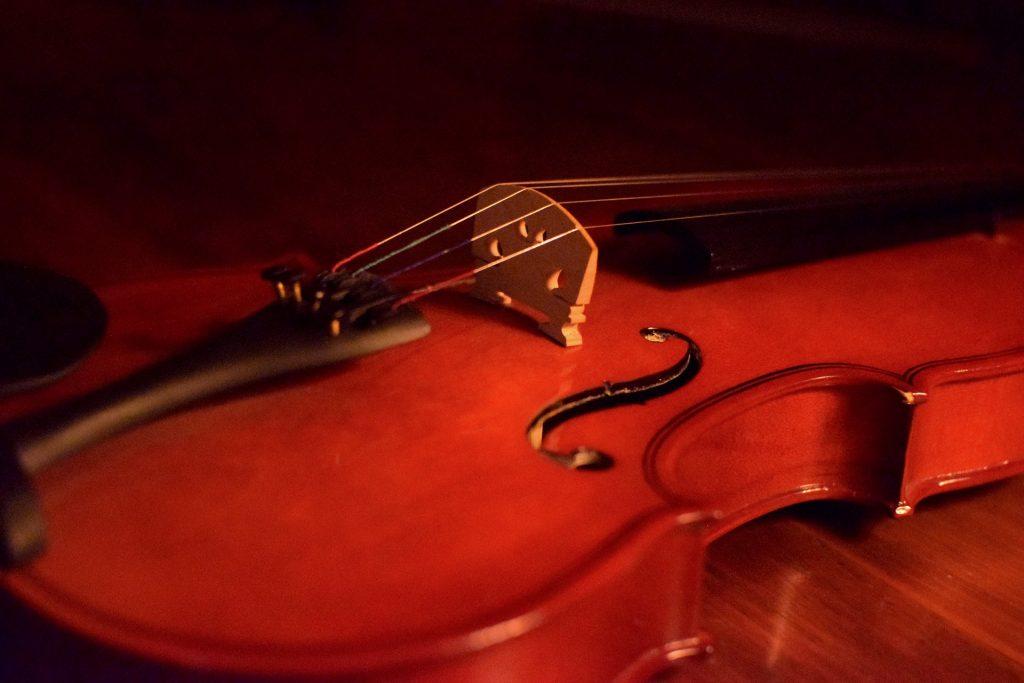 Вечер скрипичной музыки состоится в Свиблове